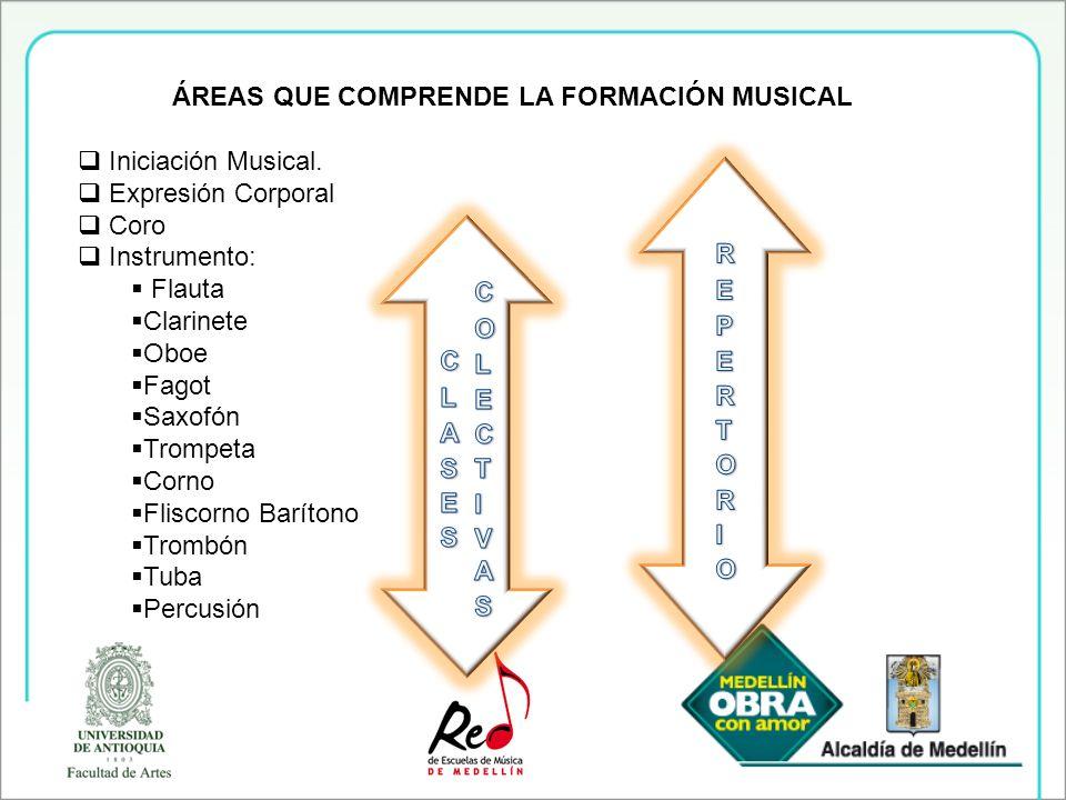 ÁREAS QUE COMPRENDE LA FORMACIÓN MUSICAL