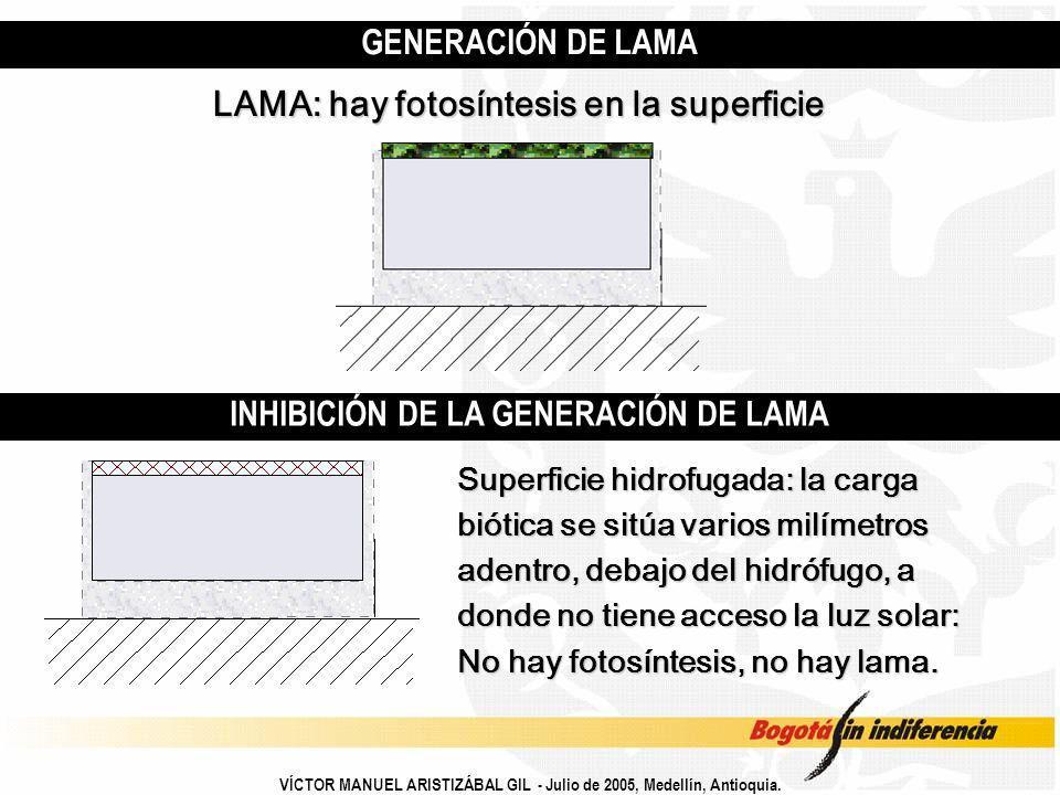 INHIBICIÓN DE LA GENERACIÓN DE LAMA