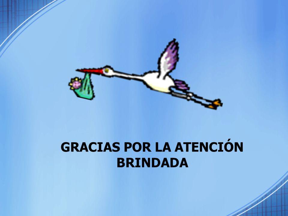 GRACIAS POR LA ATENCIÓN BRINDADA