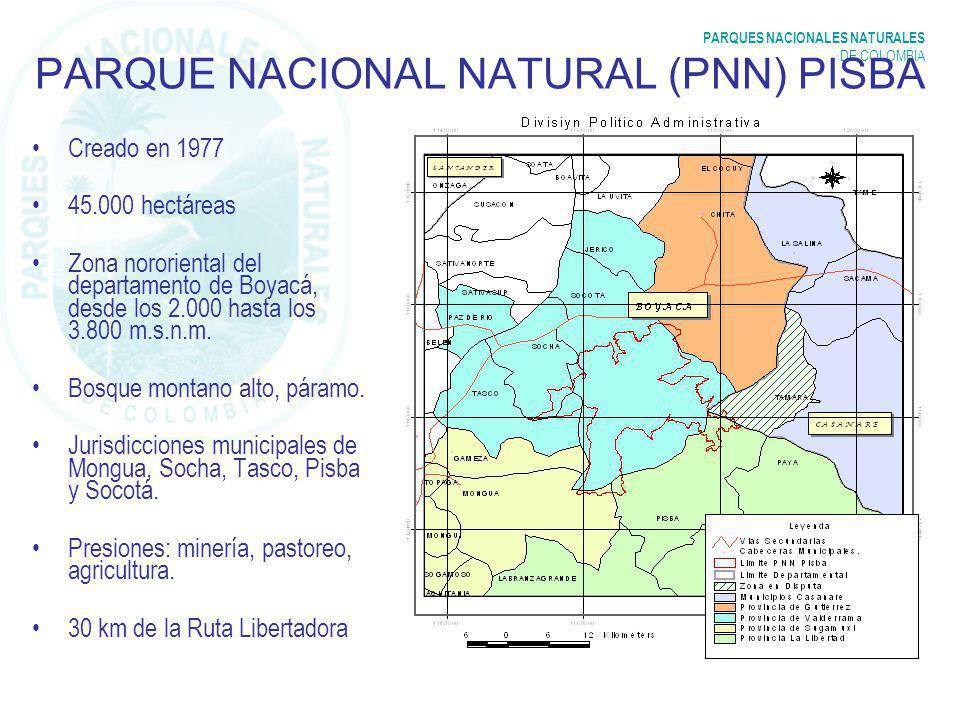 PARQUE NACIONAL NATURAL (PNN) PISBA