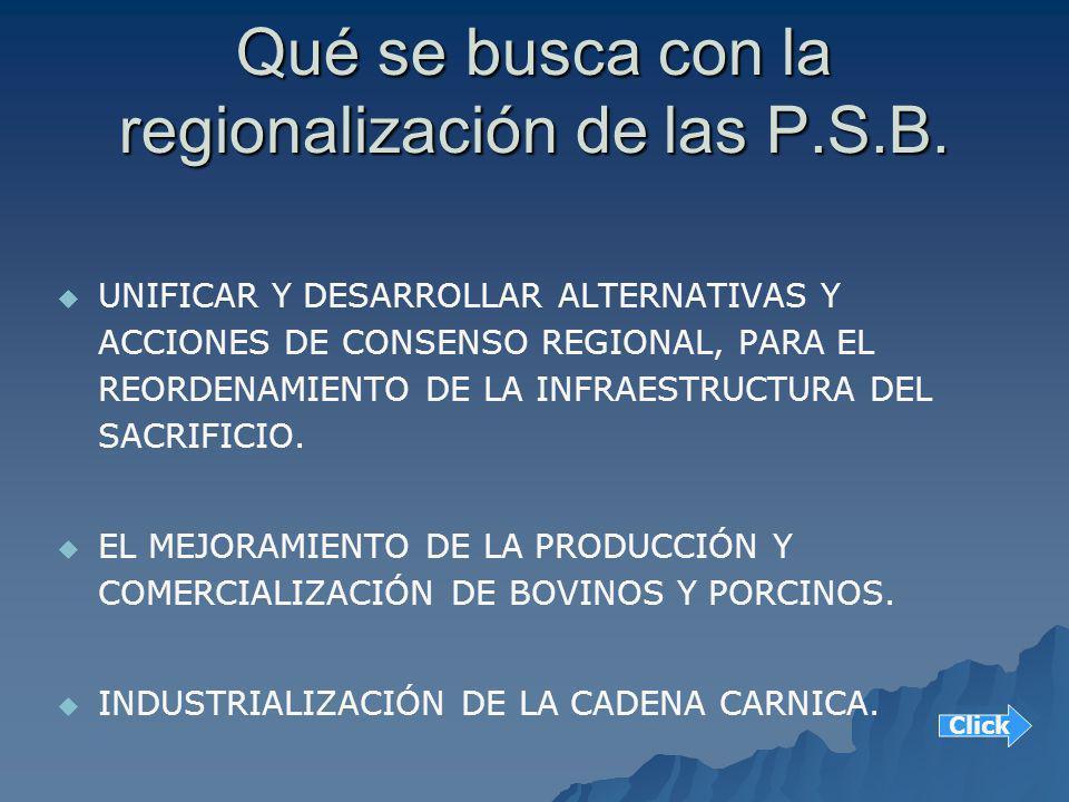 Qué se busca con la regionalización de las P.S.B.