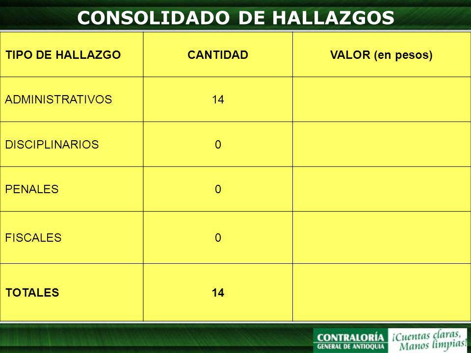 CONSOLIDADO DE HALLAZGOS