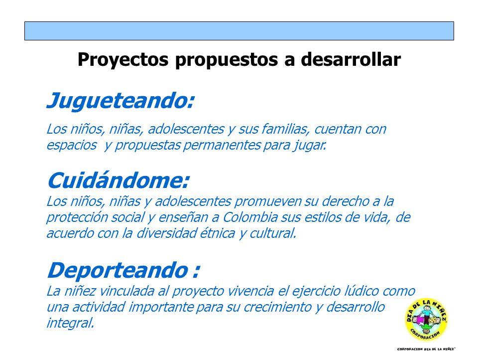 Proyectos propuestos a desarrollar