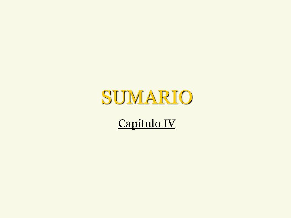 SUMARIO Capítulo IV