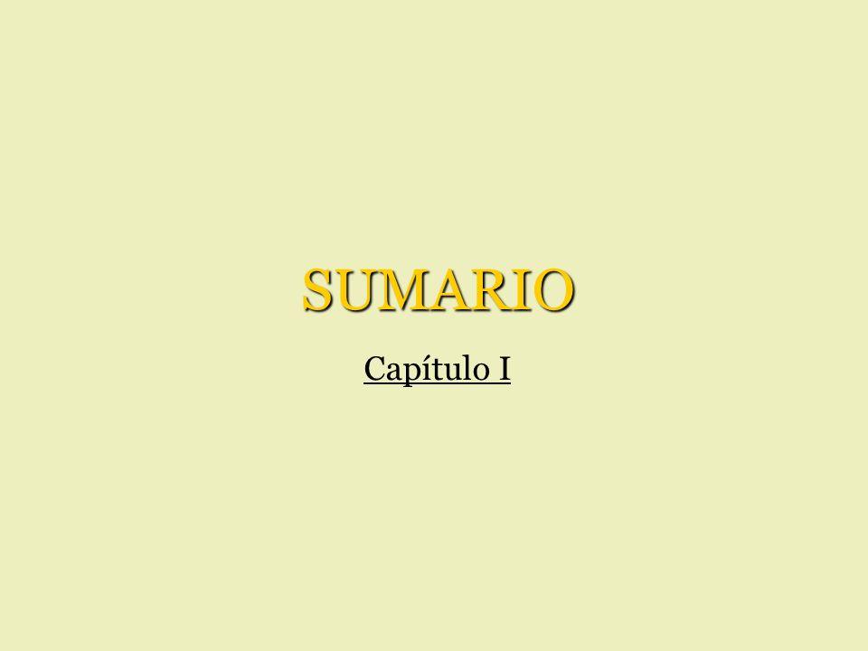 SUMARIO Capítulo I