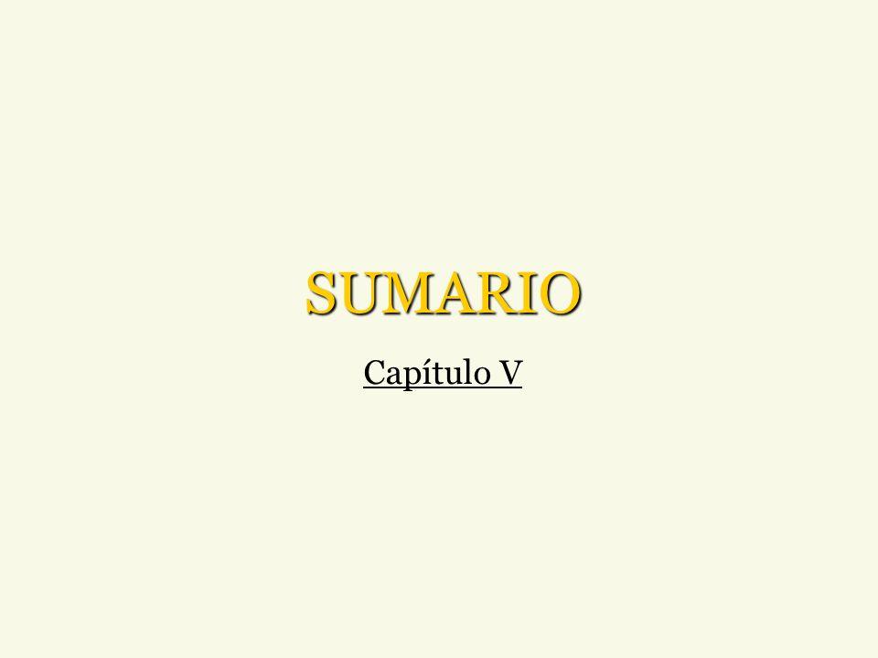 SUMARIO Capítulo V