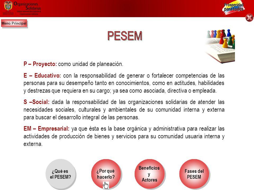 PESEM P – Proyecto: como unidad de planeación.