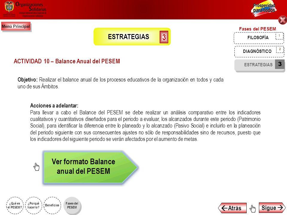 Ver formato Balance anual del PESEM