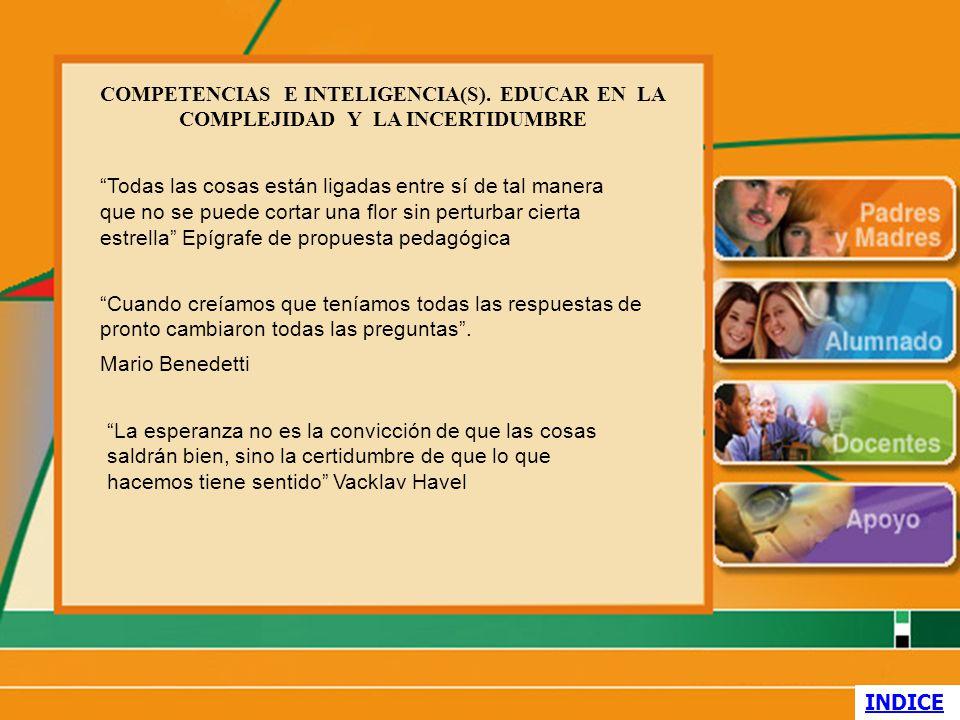 COMPETENCIAS E INTELIGENCIA(S)