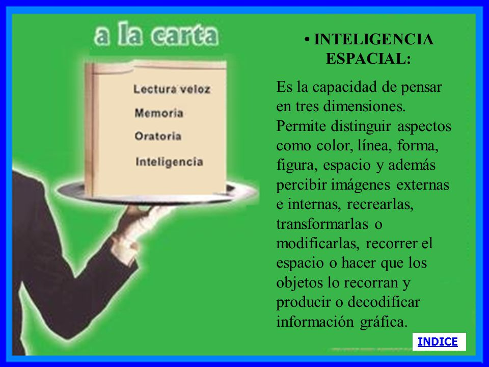 • INTELIGENCIA ESPACIAL: