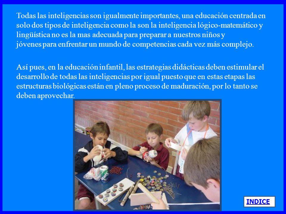 Todas las inteligencias son igualmente importantes, una educación centrada en solo dos tipos de inteligencia como la son la inteligencia lógico-matemático y lingüística no es la mas adecuada para preparar a nuestros niños y jóvenes para enfrentar un mundo de competencias cada vez más complejo.