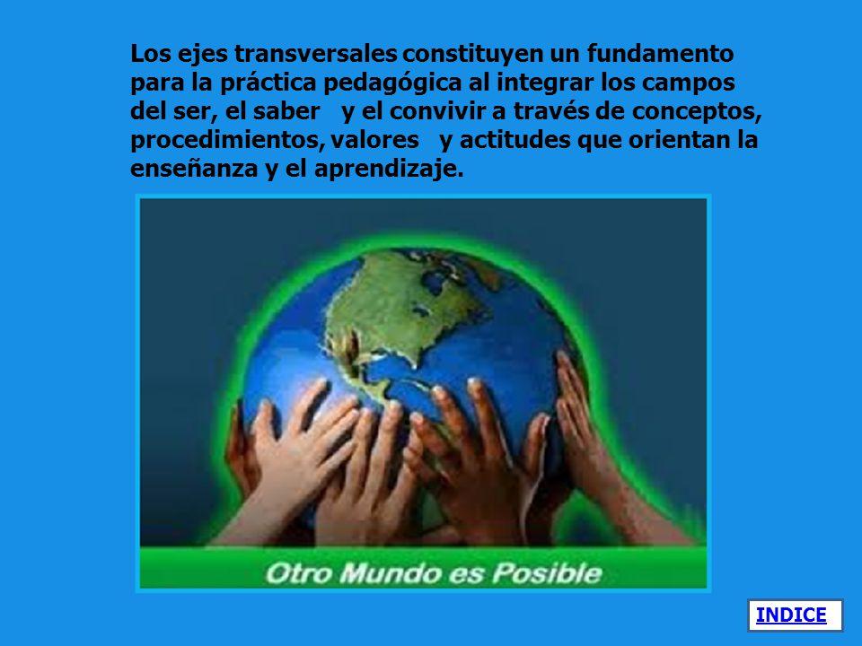 Los ejes transversales constituyen un fundamento para la práctica pedagógica al integrar los campos del ser, el saber y el convivir a través de conceptos, procedimientos, valores y actitudes que orientan la enseñanza y el aprendizaje.