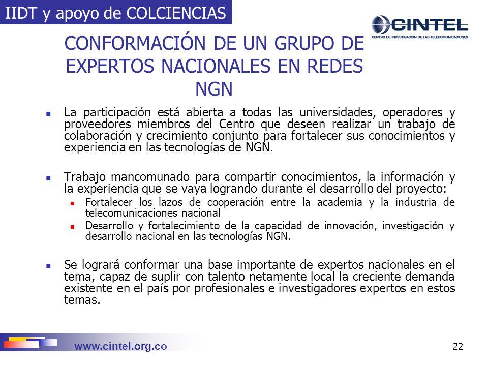 CONFORMACIÓN DE UN GRUPO DE EXPERTOS NACIONALES EN REDES NGN