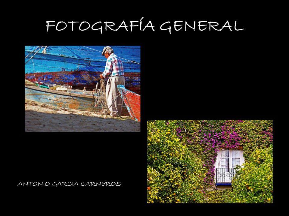 FOTOGRAFÍA GENERAL VANESA BRENES ANTONIO GARCIA CARNEROS