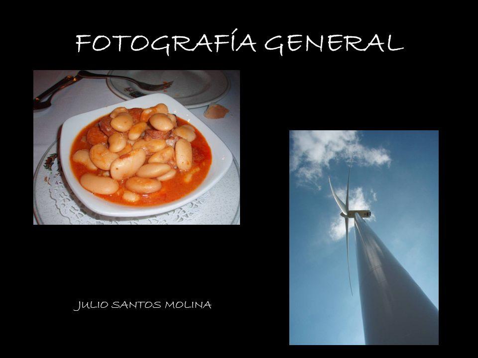 FOTOGRAFÍA GENERAL VANESA BRENES JULIO SANTOS MOLINA