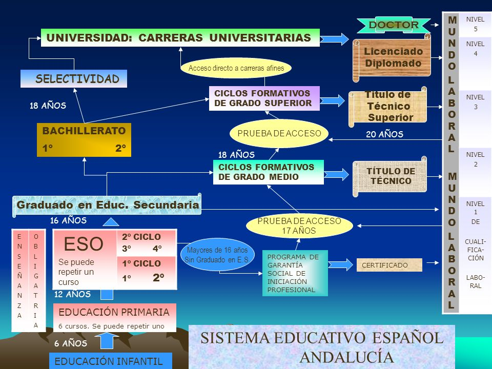 ESO SISTEMA EDUCATIVO ESPAÑOL ANDALUCÍA doctor