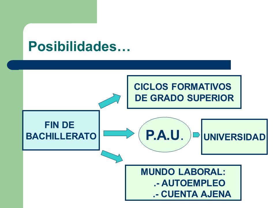 Posibilidades… P.A.U. CICLOS FORMATIVOS DE GRADO SUPERIOR FIN DE