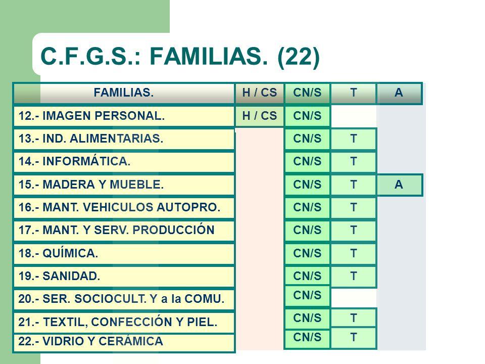C.F.G.S.: FAMILIAS. (22) FAMILIAS. H / CS CN/S T A