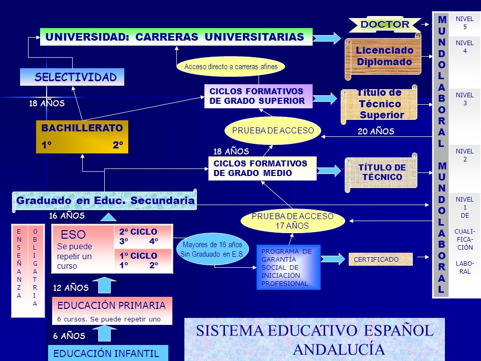 SISTEMA EDUCATIVO ESPAÑOL ANDALUCÍA