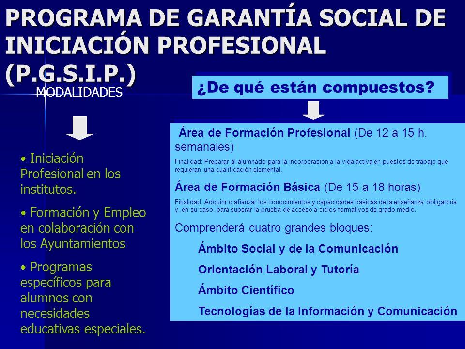 PROGRAMA DE GARANTÍA SOCIAL DE INICIACIÓN PROFESIONAL (P.G.S.I.P.)
