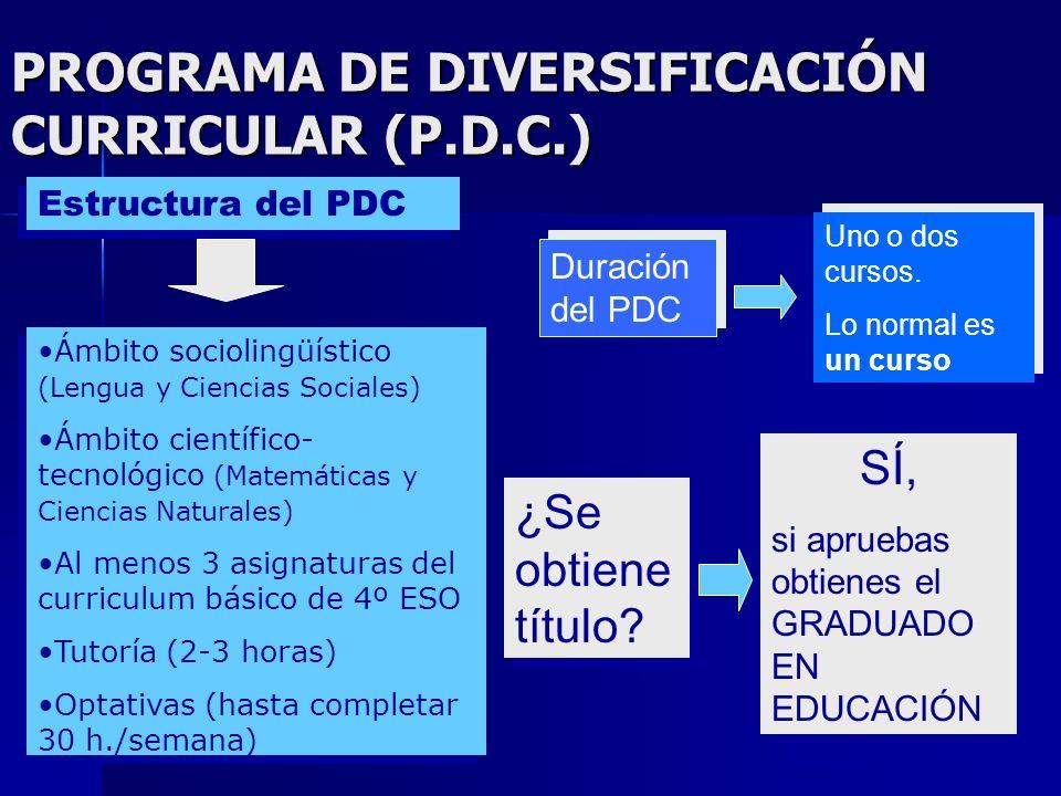 PROGRAMA DE DIVERSIFICACIÓN CURRICULAR (P.D.C.)