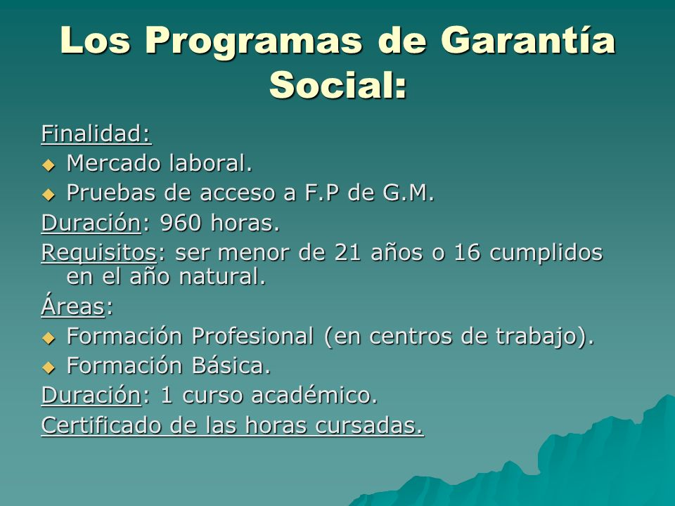 Los Programas de Garantía Social: