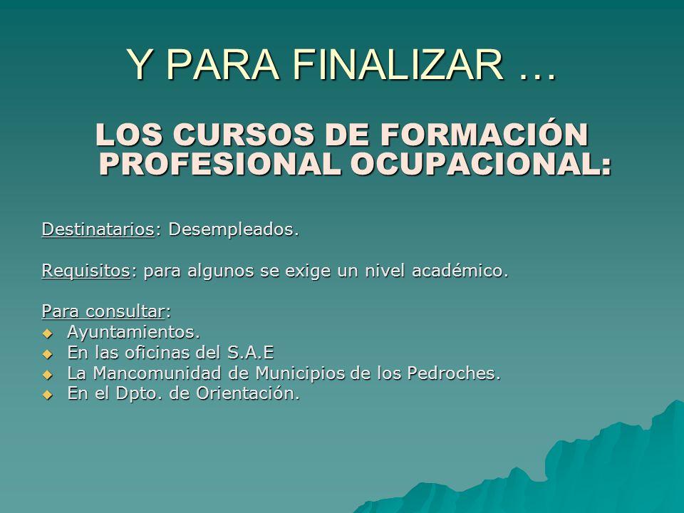 LOS CURSOS DE FORMACIÓN PROFESIONAL OCUPACIONAL: