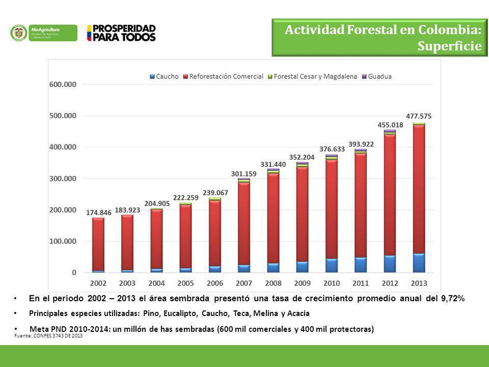 Actividad Forestal en Colombia: Superficie