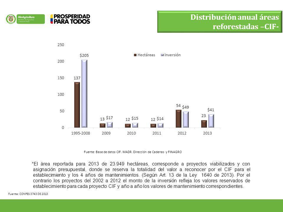 Distribución anual áreas reforestadas –CIF-
