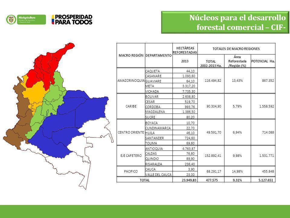 Núcleos para el desarrollo forestal comercial – CIF-