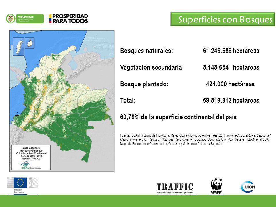 Superficies con Bosques