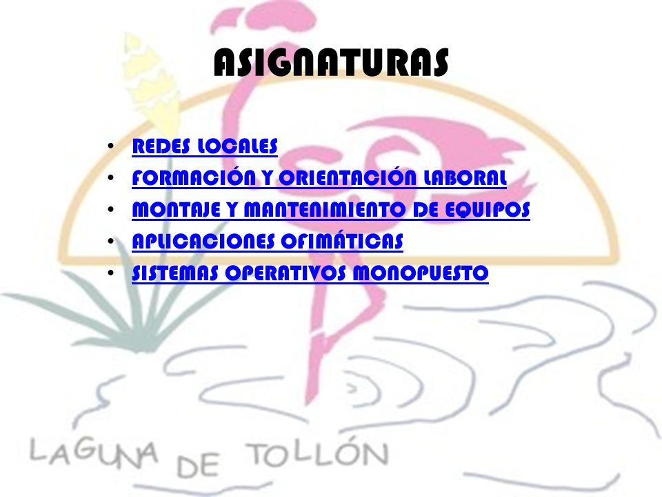 ASIGNATURAS REDES LOCALES FORMACIÓN Y ORIENTACIÓN LABORAL