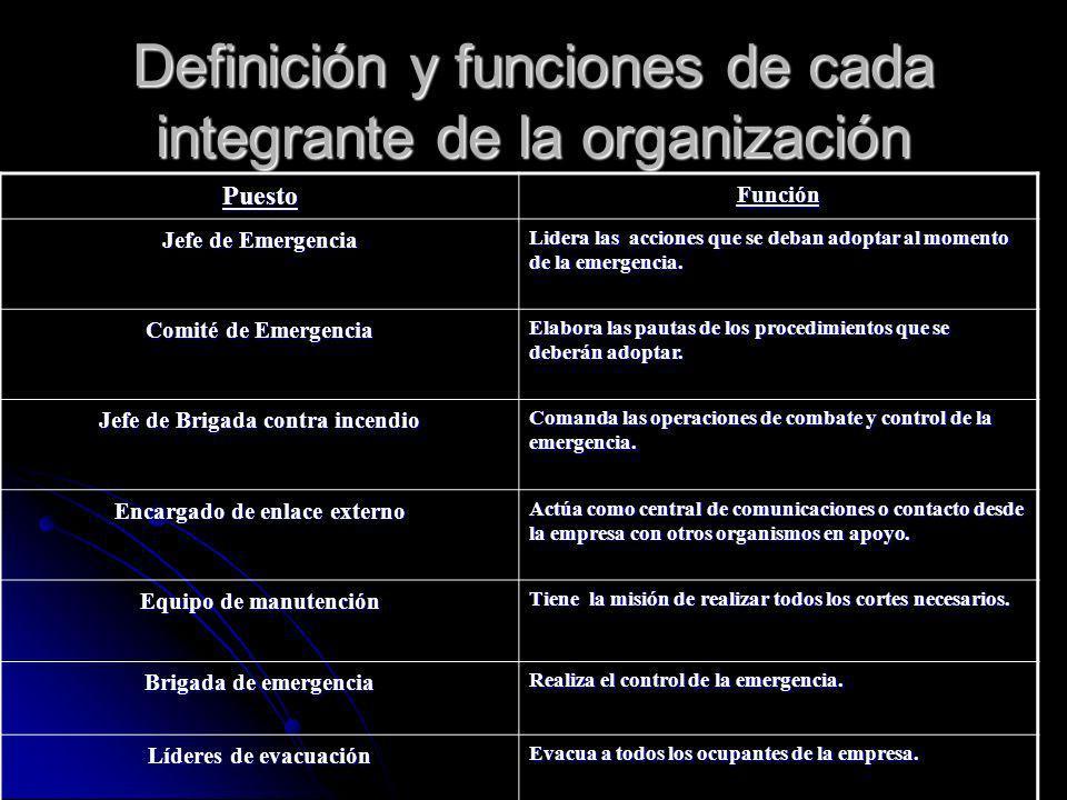Definición y funciones de cada integrante de la organización