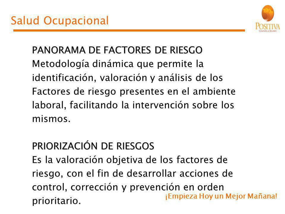 Salud Ocupacional PANORAMA DE FACTORES DE RIESGO