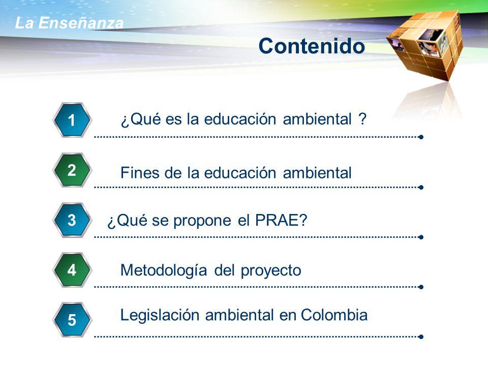 Contenido 1 ¿Qué es la educación ambiental 2
