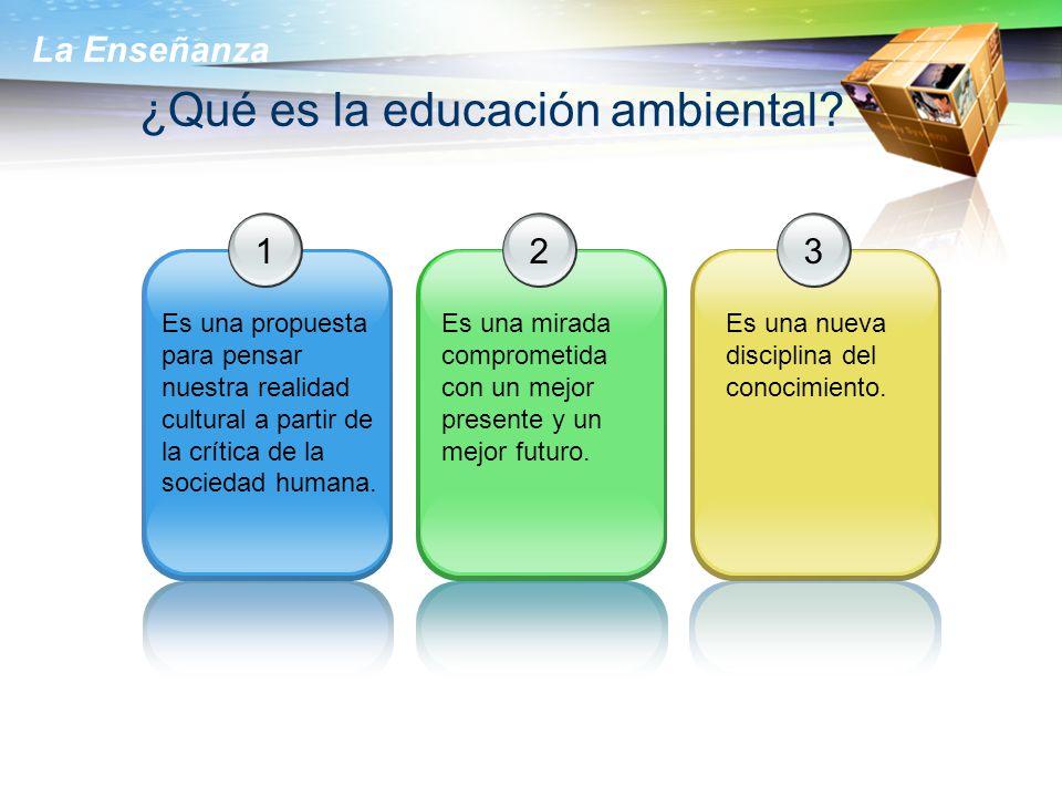 ¿Qué es la educación ambiental
