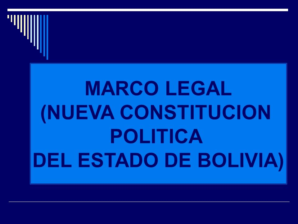 MARCO LEGAL (NUEVA CONSTITUCION