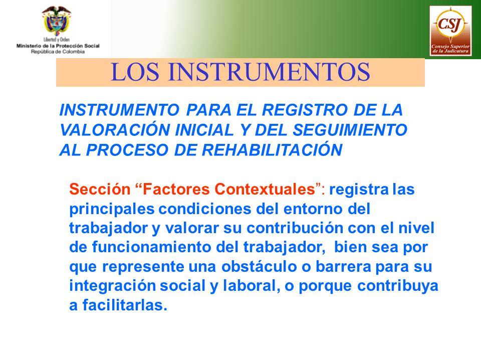 LOS INSTRUMENTOS INSTRUMENTO PARA EL REGISTRO DE LA VALORACIÓN INICIAL Y DEL SEGUIMIENTO AL PROCESO DE REHABILITACIÓN.