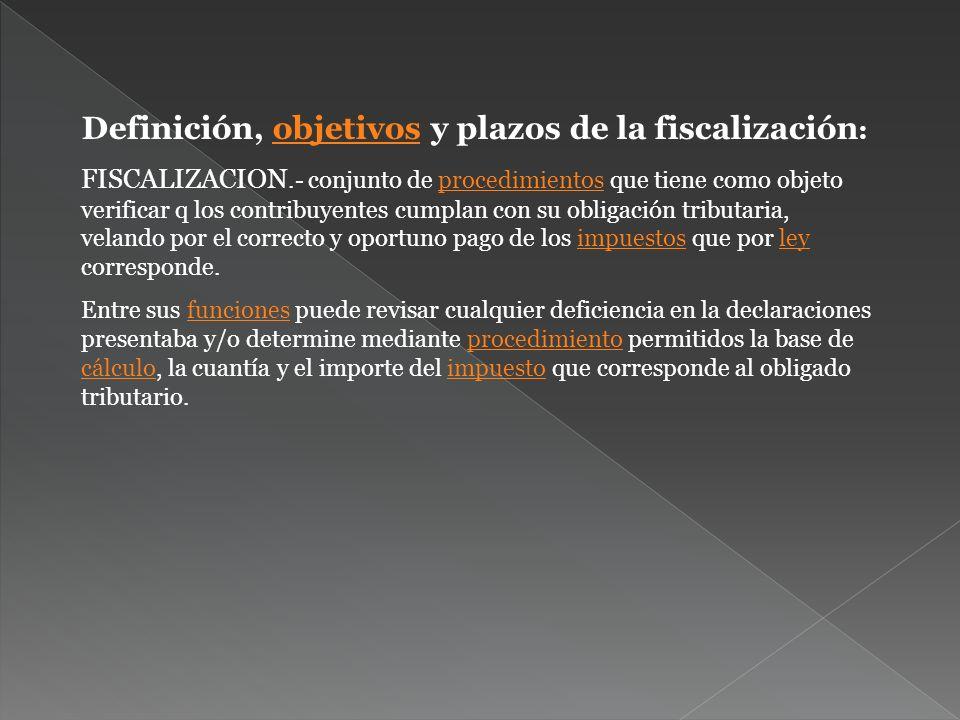 Definición, objetivos y plazos de la fiscalización: