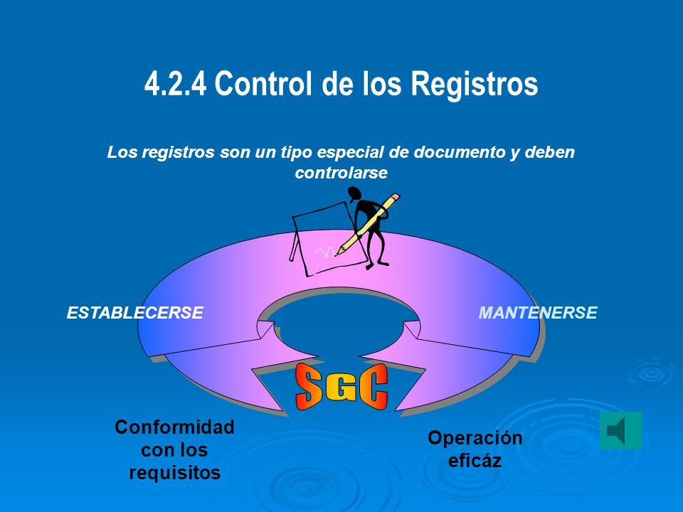 4.2.4 Control de los Registros