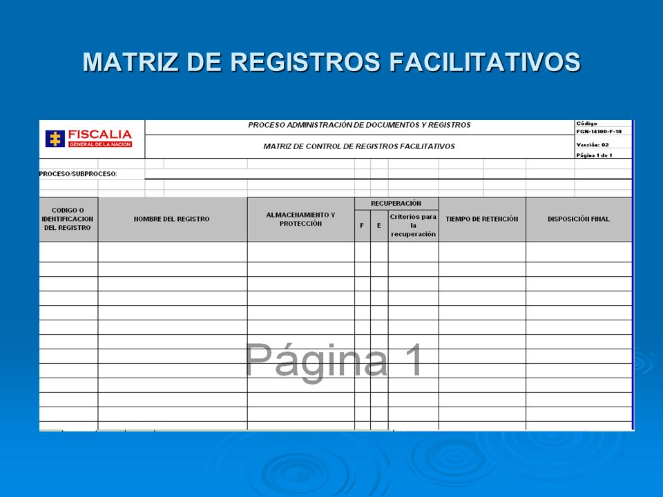 MATRIZ DE REGISTROS FACILITATIVOS