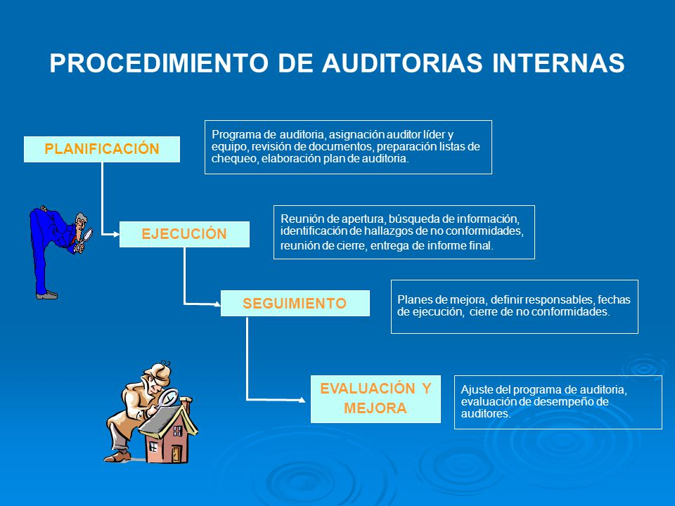 PROCEDIMIENTO DE AUDITORIAS INTERNAS