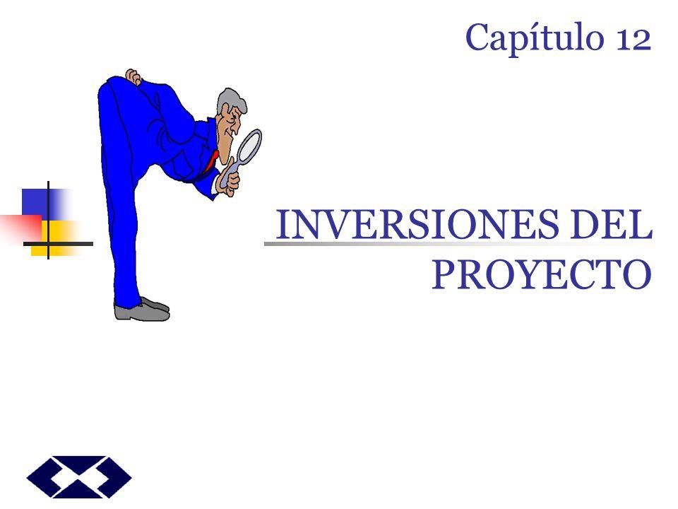 Capítulo 12 LAS INVERSIONES DEL PROYECTO
