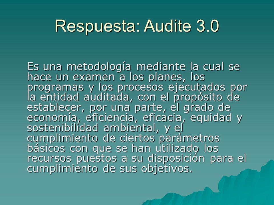 Respuesta: Audite 3.0