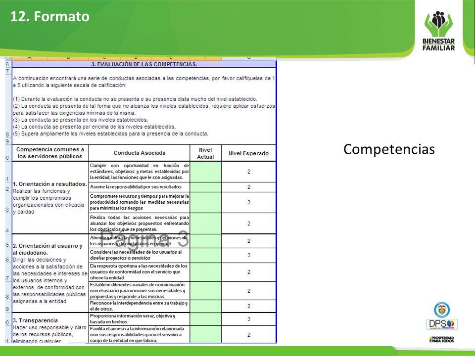 12. Formato Competencias