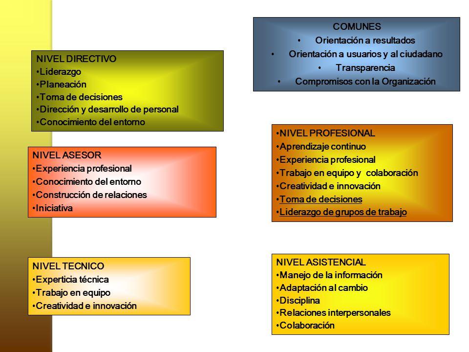 Orientación a resultados Orientación a usuarios y al ciudadano