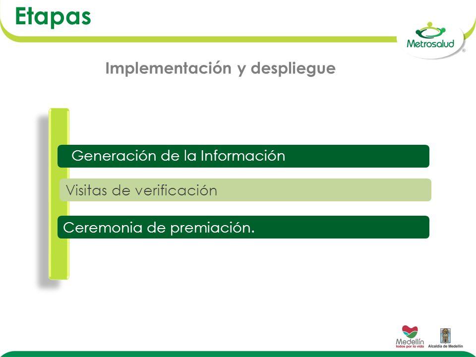Etapas Implementación y despliegue Generación de la Información