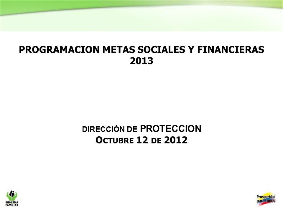 PROGRAMACION METAS SOCIALES Y FINANCIERAS 2013 dirección de PROTECCION Octubre 12 de 2012