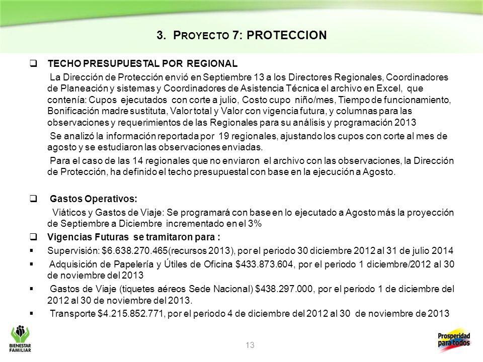 3. Proyecto 7: PROTECCION TECHO PRESUPUESTAL POR REGIONAL