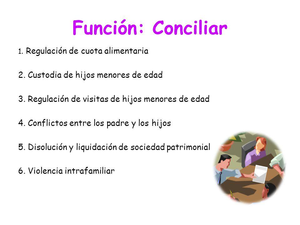 Función: Conciliar 2. Custodia de hijos menores de edad